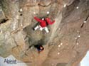 Alex Huber reenacting the first free ascent of Voie Petit: Alpinist Magazine